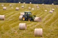 Nowa reforma systemu rolnictwa - Plan na bardziej ekologiczną żywność